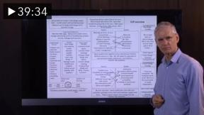 V2P Model - A Technical Note